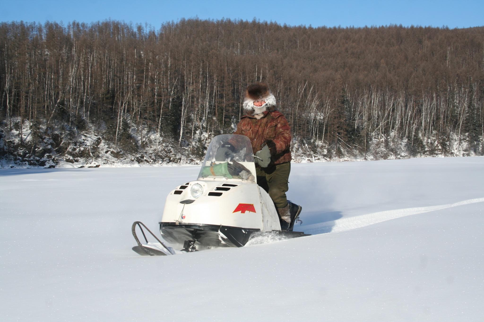Участковый госинспектор В.П. Шичанин на зимних учетах животных