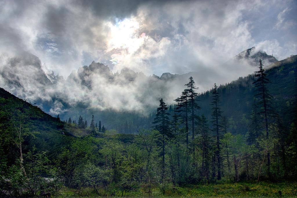 Туман над Дуссе-Алинем